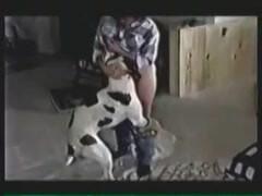 Longest Videos Free Sexloverfury Free Animal Lover